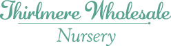 Thirlmere Wholesale Nursery